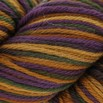 Cascade Yarns 220 Paints - 9739