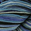 Cascade Yarns 220 Superwash Paints Discontinued Colors - 9916