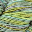 Cascade Yarns 220 Superwash Paints Discontinued Colors - 9936