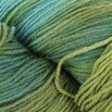 Valley Yarns 40th Anniversary Huntington - hand dyed by Lorna's Laces - Huron