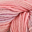 Cascade Yarns 220 Superwash Paints Discontinued Colors - 9867