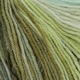 Universal Yarn Deluxe Worsted Long Print