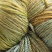 Valley Yarns Charlemont Hand Dyed by the Kangaroo Dyer - Oakgrove