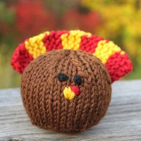 351 Knit Turkey (Free Pattern)