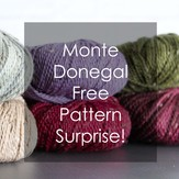 Plymouth Yarn Monte Donegal Free Pattern Surprise