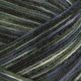 Regia 4 Ply Indio Color