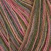 Classic Elite Yarns Silky Alpaca Lace Hand Paint - 2491